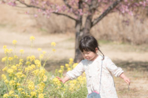 菜の花にタッチ(Nikon D5500)