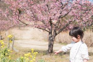 菜の花を指す子ども(Nikon D5500)