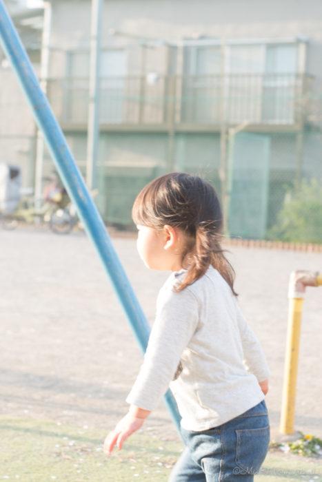 夕日をあびて走るShico(Nikon D5500)