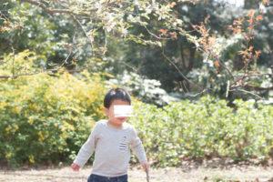 枝を持つ男の子(Nikon D5500)