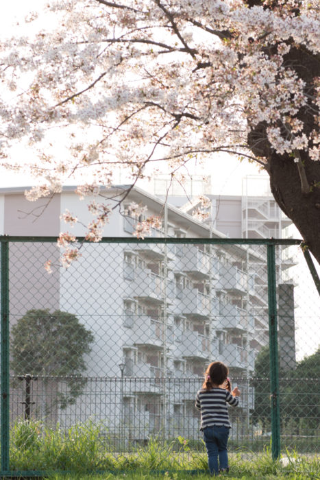 フェンスの向こうを見上げる娘(Nikon D5500)
