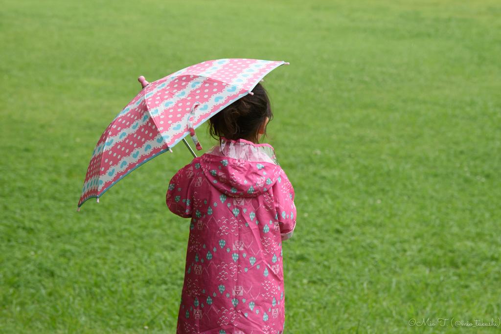 傘とShico:Nikon D5500