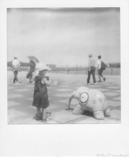 象を撮るShico(SX-70)