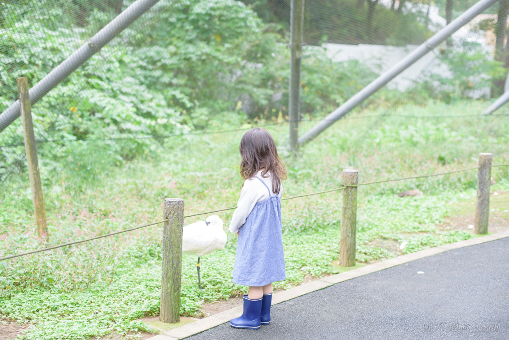 秋の多摩動物公園